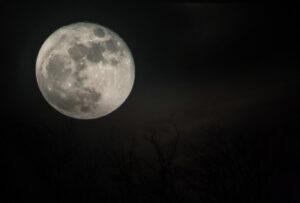Bild zur Mondhomöopathie Vollmond